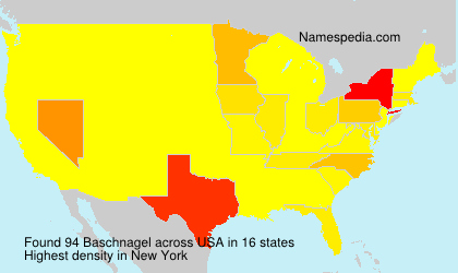 Surname Baschnagel in USA