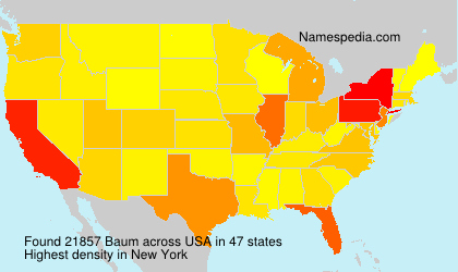 Surname Baum in USA
