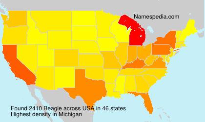 Familiennamen Beagle - USA