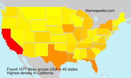 Surname Beau in USA
