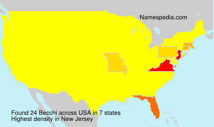 Surname Becchi in USA