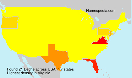 Surname Beche in USA