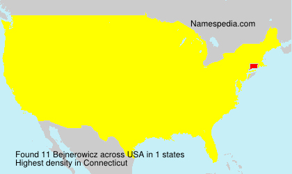 Familiennamen Bejnerowicz - USA
