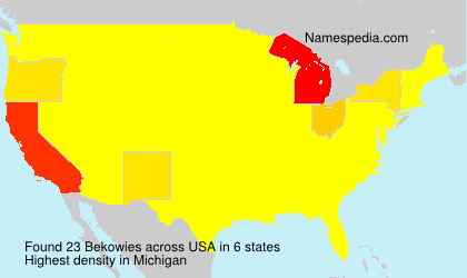 Surname Bekowies in USA