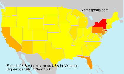 Surname Bergstein in USA
