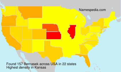 Familiennamen Bernasek - USA