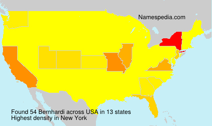 Surname Bernhardi in USA