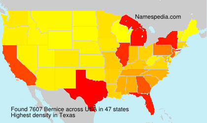 Surname Bernice in USA
