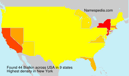 Surname Bialkin in USA