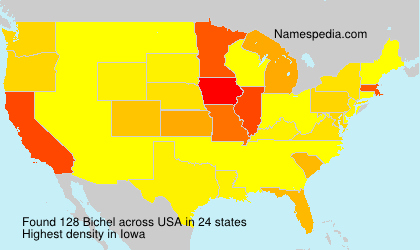 Surname Bichel in USA