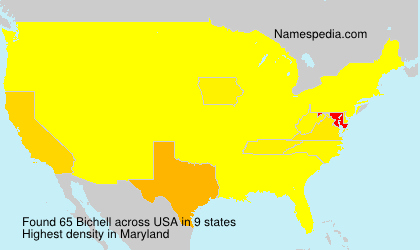 Surname Bichell in USA