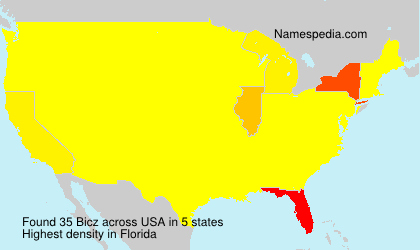 Surname Bicz in USA