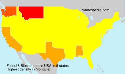 Familiennamen Bieche - USA