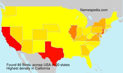 Surname Bindu in USA