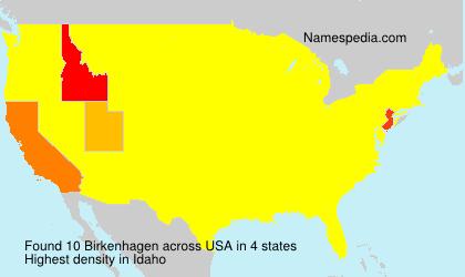 Surname Birkenhagen in USA