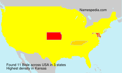 Surname Bisle in USA