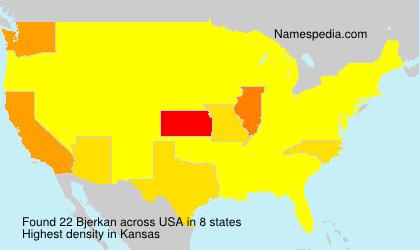Surname Bjerkan in USA
