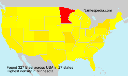 Surname Blesi in USA