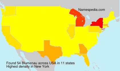 Familiennamen Blumenau - USA