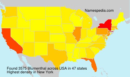 Surname Blumenthal in USA