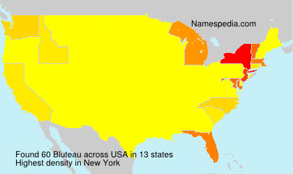 Surname Bluteau in USA