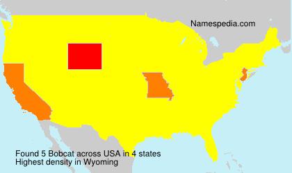 Surname Bobcat in USA