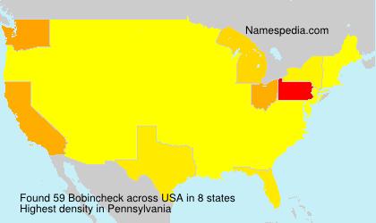 Surname Bobincheck in USA