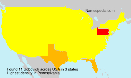 Surname Bobovich in USA