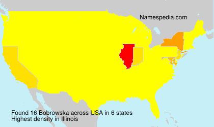 Familiennamen Bobrowska - USA