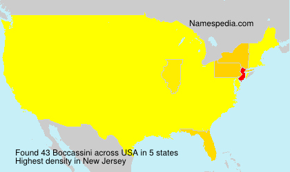 Surname Boccassini in USA