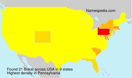 Surname Bokat in USA