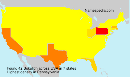 Surname Bokulich in USA