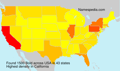 Surname Bold in USA