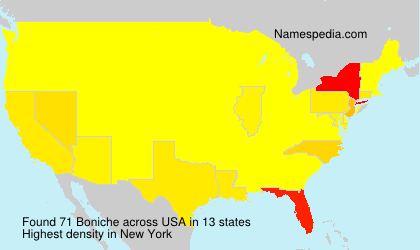 Surname Boniche in USA