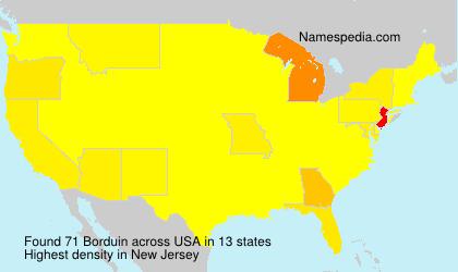 Surname Borduin in USA
