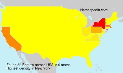 Surname Borkow in USA