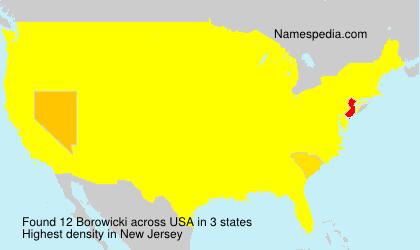 Surname Borowicki in USA