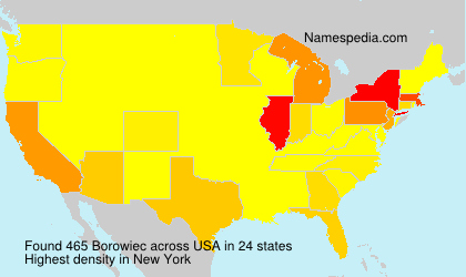 Surname Borowiec in USA