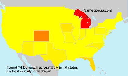 Familiennamen Borrusch - USA