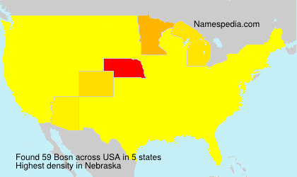 Surname Bosn in USA