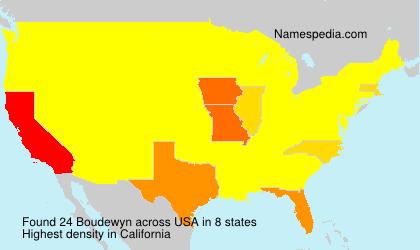 Surname Boudewyn in USA