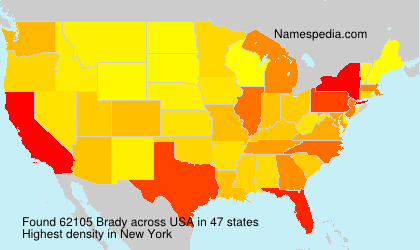Surname Brady in USA