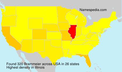 Familiennamen Brammeier - USA