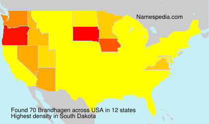 Surname Brandhagen in USA