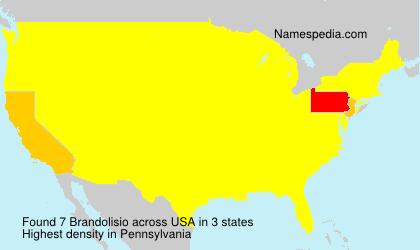Familiennamen Brandolisio - USA