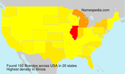 Familiennamen Brandys - USA