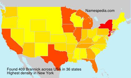 Surname Brannick in USA