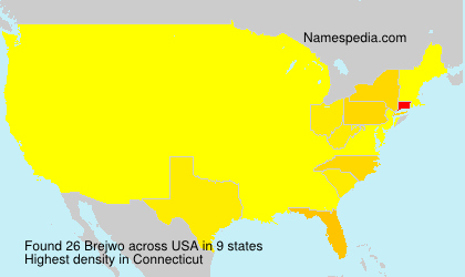 Surname Brejwo in USA