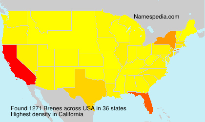 Surname Brenes in USA