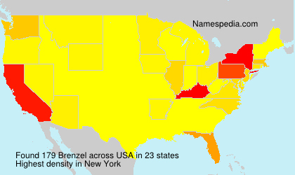 Surname Brenzel in USA